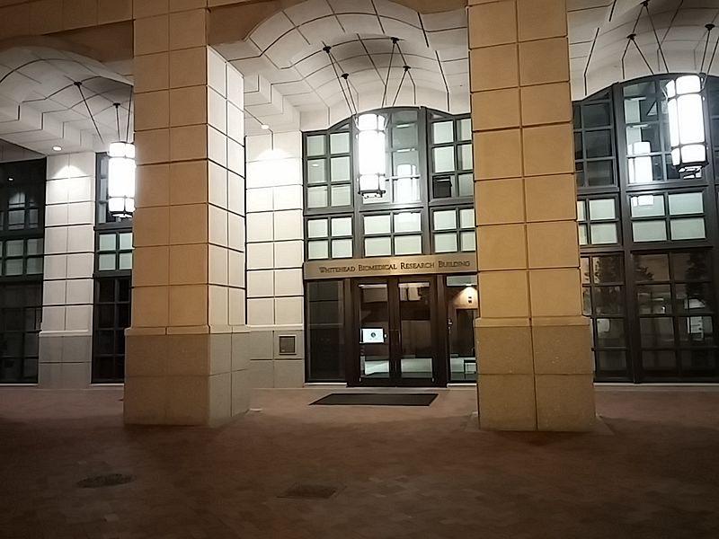 Университет Эмори США