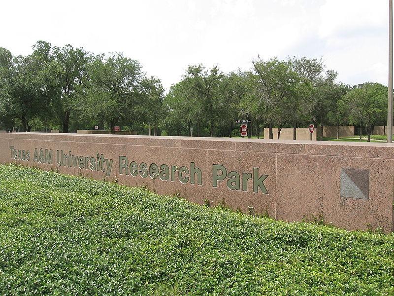 Техас & M University США